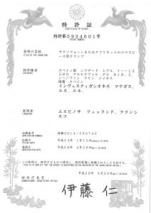 japon_page_1